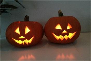 Pompoen Uithollen Halloween.Pompoen Uithollen Kidsproof Kidsproof Kop Van Noord Holland