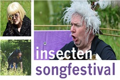 Insectensongfestival!